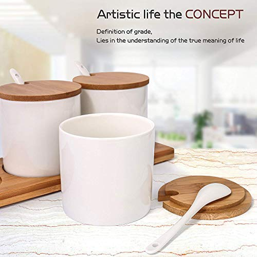 June Sky Ceramic Food Storage Containers with Bamboo Lid- Modern Design Porcelain Jar- Perfect Canister for Sugar Bowl Serving Tea, Coffee, Spice- Condiment Pot 8 oz, white