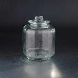 """10"""" Clear Apothecary Canister Glass Storage Jar with Lid"""