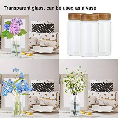 Weetall Glass Storage Jars Kitchen Canisters Set-6 250ml, Glass Cans with Lids Sealed Food Storage Containers for Sugar, Coffee, Cookies, Rice, Baking Supplies